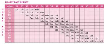Cup Size Chart Inches How To Measure Yourself For A Bra Correctly Her Style Code