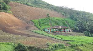 Resultado de imagen para Unidad de Planificación Rural Agropecuaria, UPRA