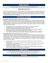 It Consultant Resume Best Of It Consultant Resume Sample Download