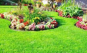 small flower garden ideas for beginners