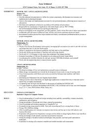 Angular Developer Resume Samples | Velvet Jobs