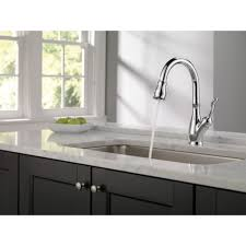 Delta Faucets Kitchen Sink Delta Faucet Foundations Standard Kitchen Faucet With Side