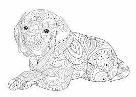 Ben je op zoek naar een kleurplaat voor je kind? Puppy Schattige Dieren Kleurplaten Moeilijk Coloring And Drawing