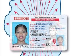 Connect Illinois' A To Of Have Identification For Legal Recipients Form Daca Immigrants Rollout Cards Important Will Why Id How Is Affect Immigrant And It