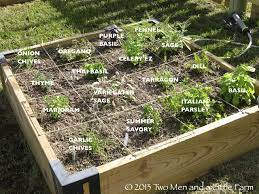 herb garden design ideas for a raised bed