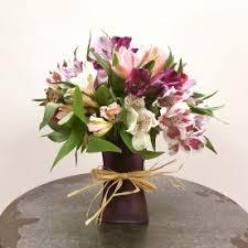 peruvian lily delight