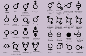 All Genders Chart The Gender Diagram Looks Like A New Diep Io Update With