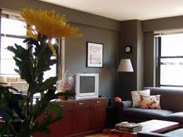 Paint Colors For Dark Rooms Wonderful Magnificent Living Room