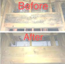 how to remove mold from inside walls how to remove mold remediation the family handyman