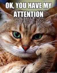 Thoughtful cat memes | quickmeme via Relatably.com