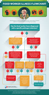 best images about food safety food handling the food worker illness flowchart is a handy resource for managers struggling to remember what to