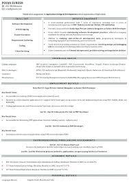Resume Format For Experienced Software Developer Senior Software