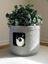 litter box hidden. Hidden Litter Box Furniture Cat Stone Coat Contemporary With