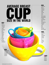 Bra Cup Size Comparison Chart Average Breast Cup Size Around The World Infographic