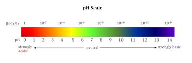 logarithmic expressions and ph ohlone