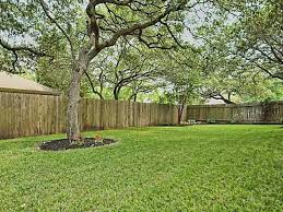 Best Shade Trees For Backyard  Large And Beautiful Photos Photo Good Trees For Backyard