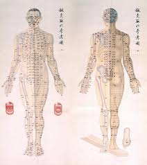 Chinese Chart Of Acupuncture Points 1