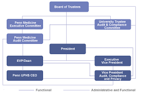 Organization Chart Penn Audit Compliance And Privacy