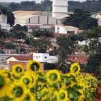imagem de Capinópolis Minas Gerais n-19