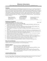 It Consultant Resume Elegant It Consultant Resume Best Solutions Of