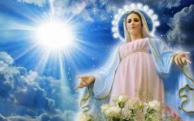 Il Santo del giorno Images?q=tbn:ANd9GcT47j3Fe8scio6OEBX4C1mqdtoZvbh3T0DM26NwhB8U_EO570nw