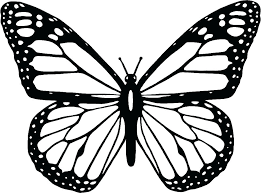 Printable Butterfly Outline Butterflies Coloring Pages Butterfly Template Monarch Color