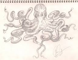 Small Picture octopus sleeve tattoo drawing pictures Octopus Drawings Tattoos