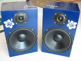 picture of build a pair of stereo speakers