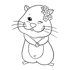 Small Picture Top 25 Free printable Hamster Coloring Pages Online