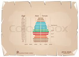 Age Generation Chart Population And Demography Population Stock Vector