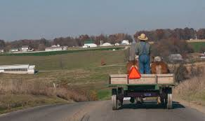 amish country dutchman news amish man and wagon
