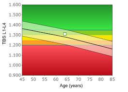 Trabecular Bone Score Tbs Chatswood Densitometry