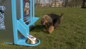 Dog Park Vending Machines Magnificent World's First Vending Machine For Dogs DesignTAXI
