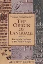 essay origin languages term paper service essay origin languages