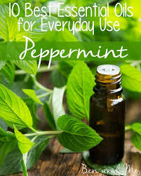 everyday uses for peppermint oil and a