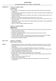 Resume Examples For Nurses Enchanting Clinical Nurse Leader Resume Samples Velvet Jobs