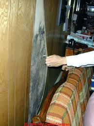 how to get rid of mold in basement superb how to remove mold from basement walls