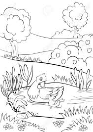 Coloring Pages Kind Duck And Little Cute Duckling Swim On The