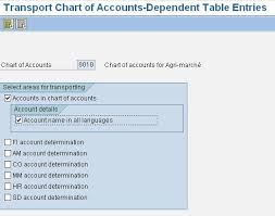 Sap Fico Corner Transport Chart Of Accounts And Company