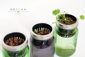 Indoor Kitchen Herb Garden Kit Agilux Growing Your Indoor Garden With Clay Pebbles