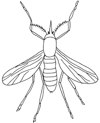 These insect coloring pages to print will serve as an important tool for education and creative free printable ladybug egg shell coloring pages and download free ladybug egg shell coloring pages. Flying Insect Coloring Sheet For Kids Topcoloringpages Net