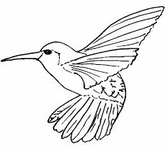 Small Picture Hummingbird Coloring Pages Bestofcoloringcom
