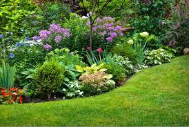 tea garden flower beds