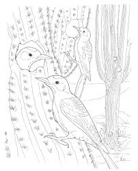 Small Picture Desert Coloring Pages jacbme