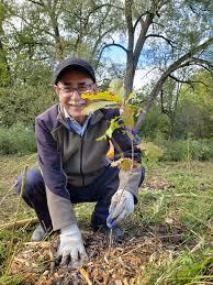 DIY Tree Planting - Lake Simcoe Region Conservation Authority
