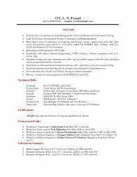 Programmer Resume Sample Software Programmer Resume Sample Fresh Custom Essays Uk 97