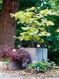 Overwintering Pretty Potted Perennials And Shrubs  Proven WinnersContainer Garden Ideas For Front Porch