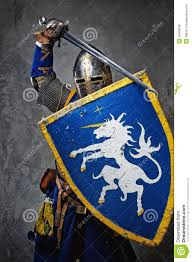 Image result for knight with shield