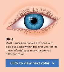 Different Shades Of Blue Eyes Chart Best Makeup Colors For Blue Gray Eyes Makeupview Co