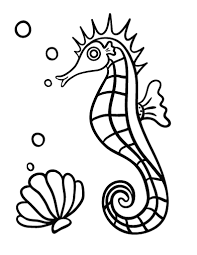 Small Picture Free Seahorse Coloring Page
